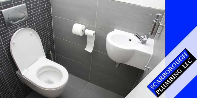 Toilet Flush Valves Repair and Installation Services in Gainesville, FL