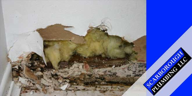 Slab-Leak-Repair-Services-in-Gainesville,-FL